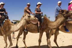Adults Only Tours to Israel - Israel Discovery Tours2